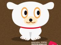 dog_shelter