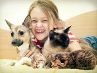 fata cu pisici